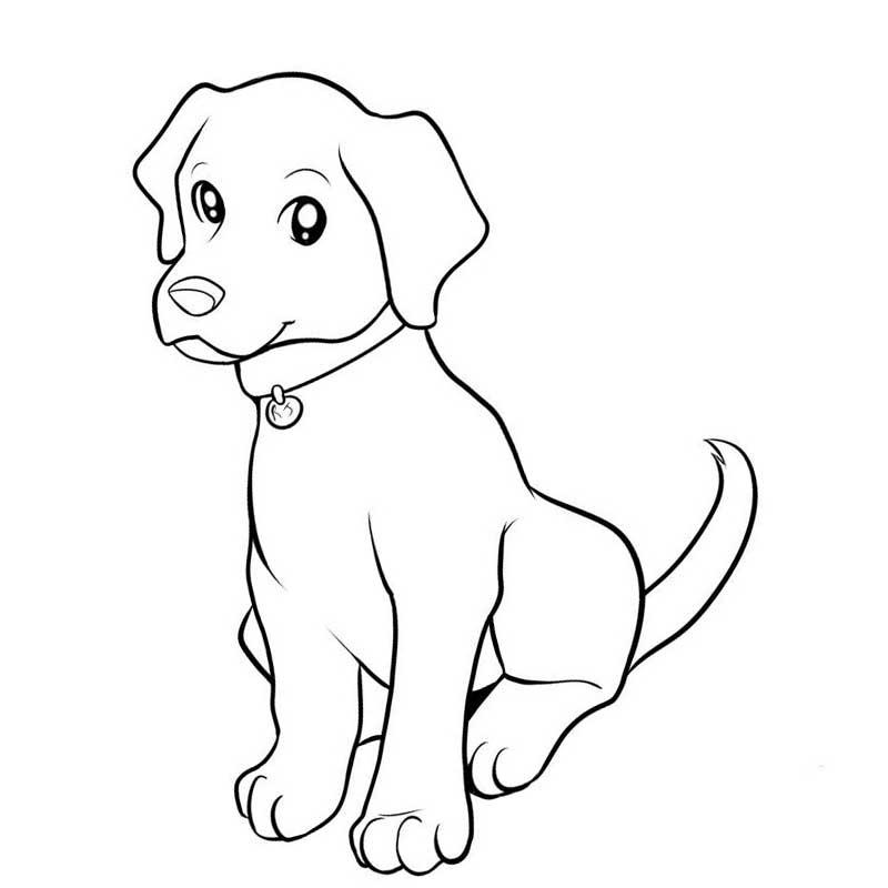 организациях ип, срисовывать рисунки собачку утилизации